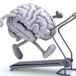 Fitness neurologique et exercice
